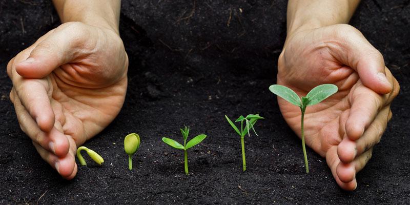 Стратегия продвижение молодого сайта. 8 важных этапов
